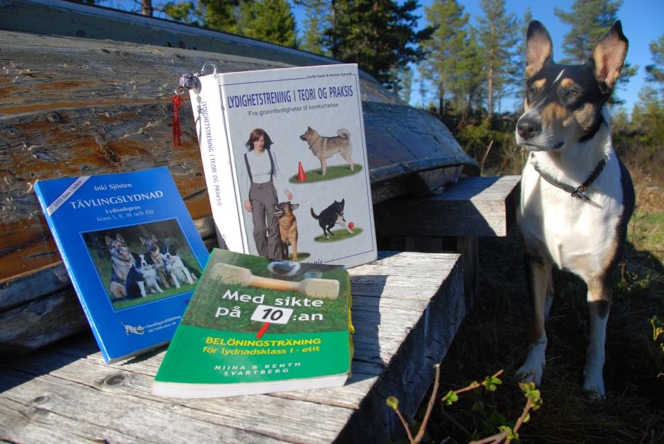 Gode hundebøker og nysgjerrig hund!