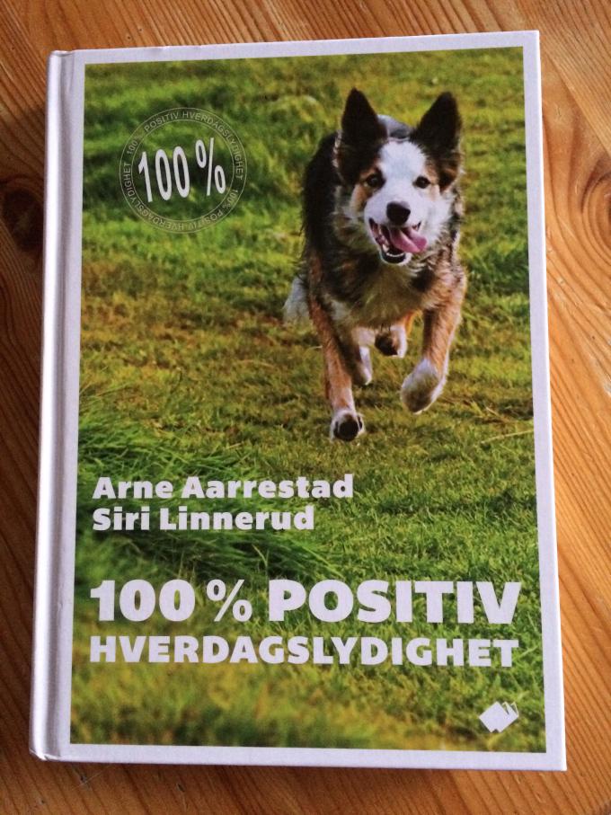 Arne AA bok
